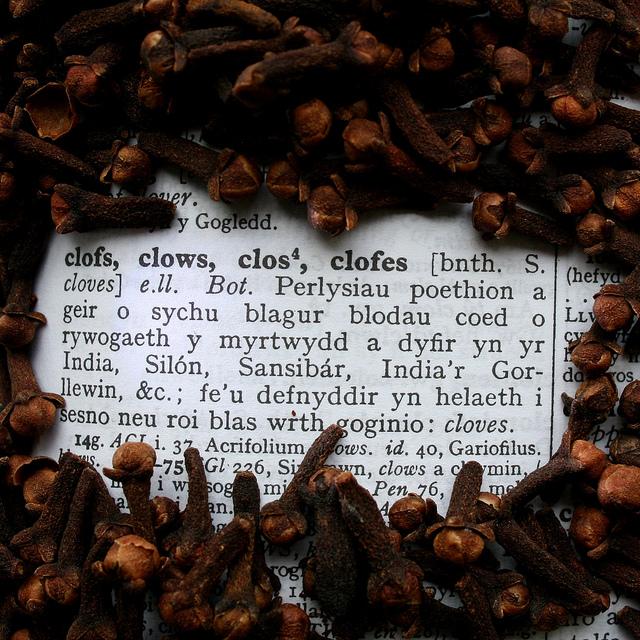 Comendo por aí – Especiarias: Cravo-da-índia