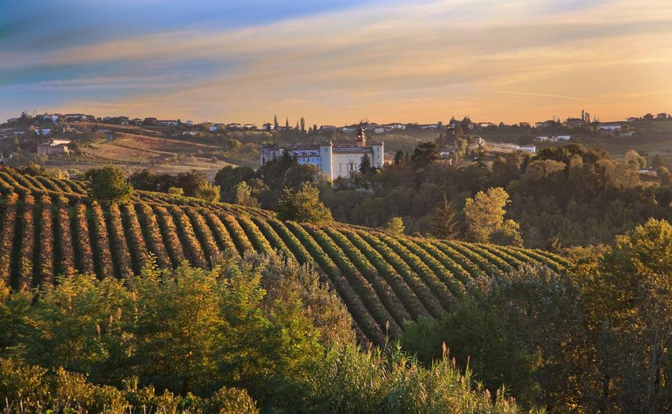 Vinhos Italianos III!