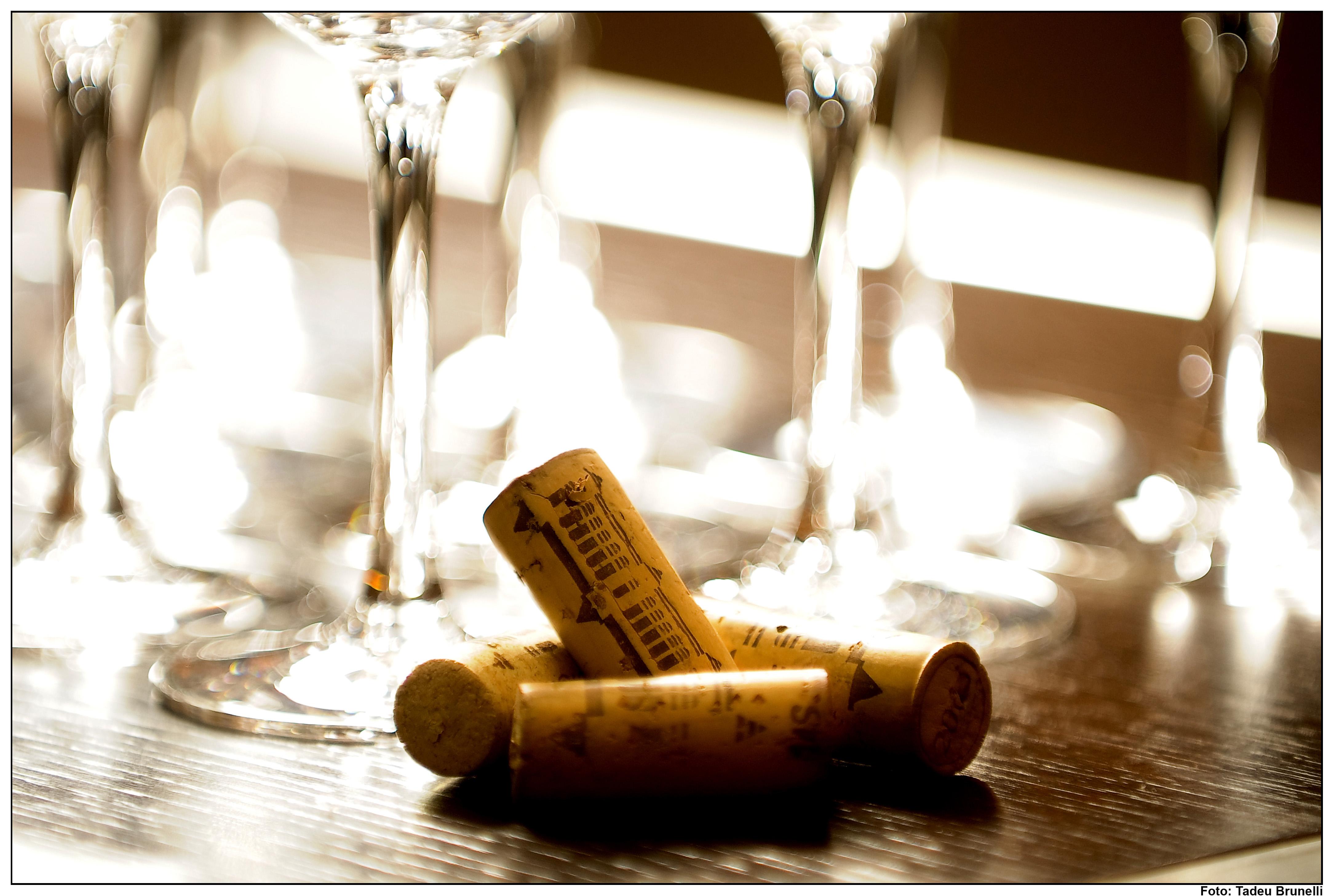 Vinhos da Espanha II!