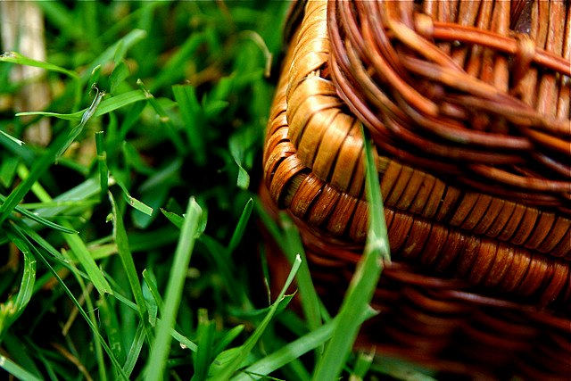 Piquenique - Foto by: flickr.com/photos/stevendepolo/ - CC