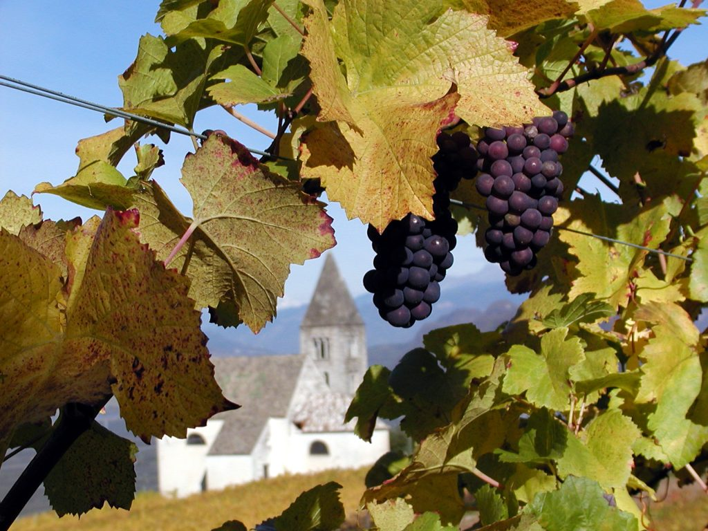 Vinho e igreja