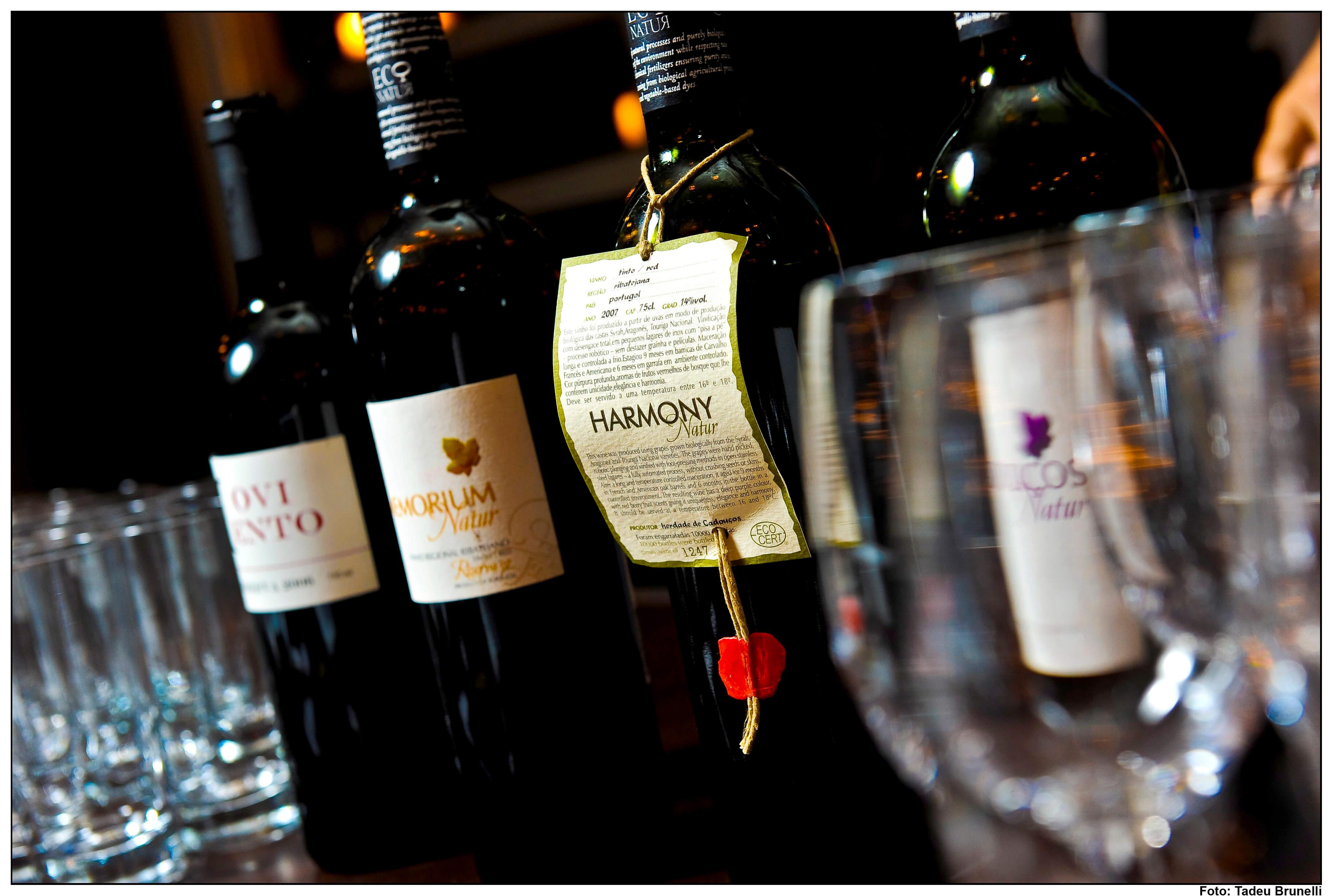 garrafas de vinho como montar uma adega